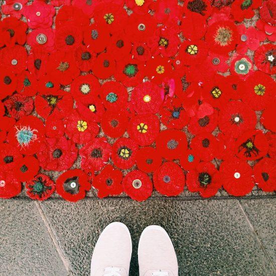 Sea of crochet poppies in Melbourne