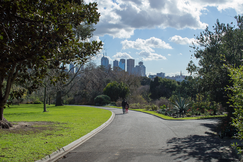 Melbourne skyline from the Royal Botanic Gardens