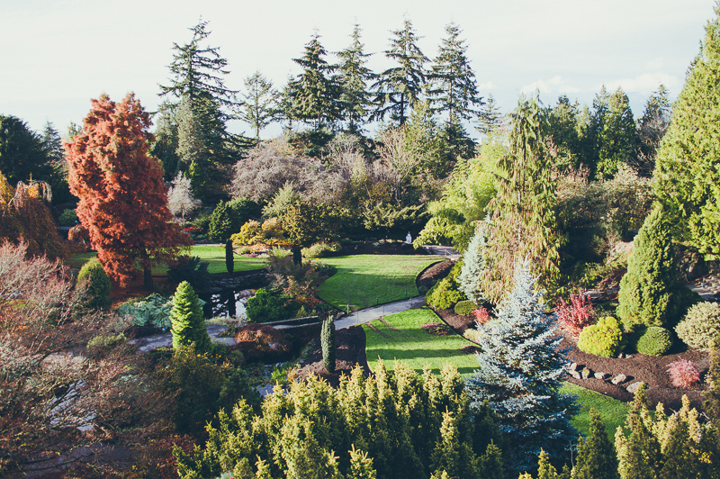 Things to do in Vancouver: visit Queen Elizabeth Park's lush gardens, with multi-coloured trees and manicured lawns.
