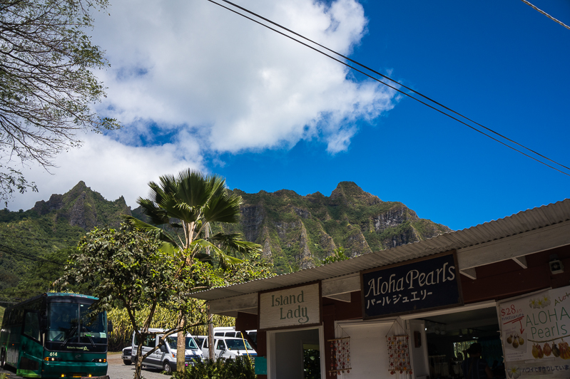 All Day Oahu Tour with Roberts Hawaii