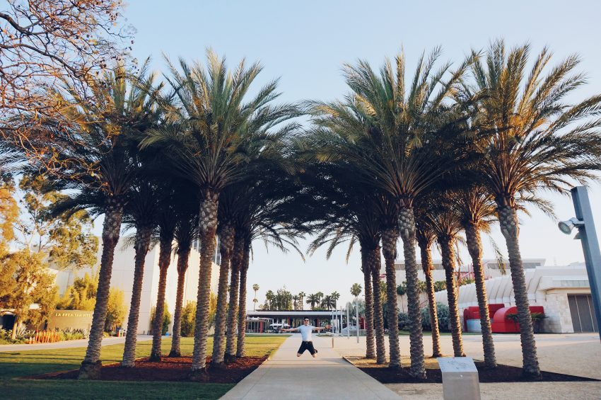Things to do in LA: visit LACMA