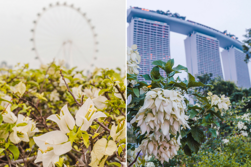 Singapore photos: Marina Bay Sands and Singapore Flyer