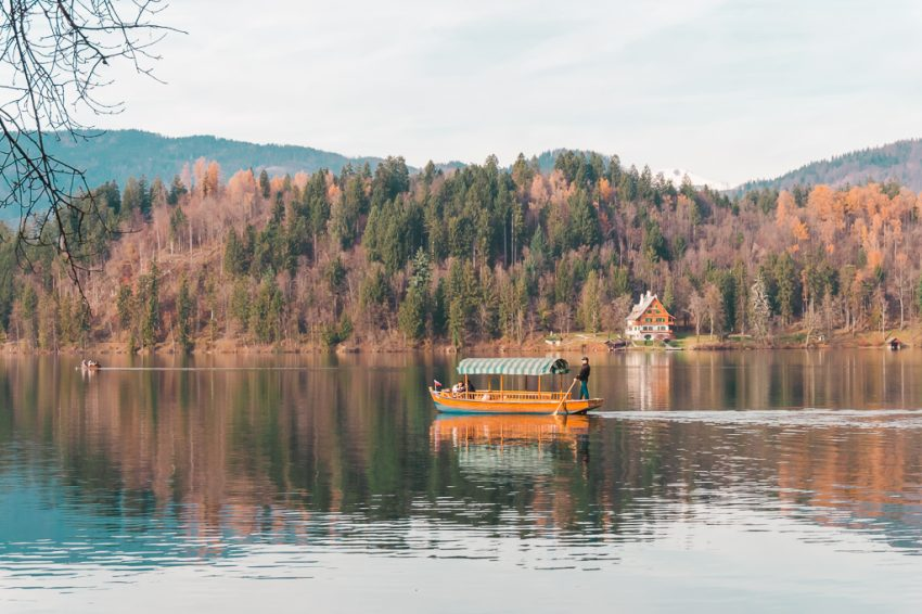 A wooden boat cruising across Lake Bled's surface, with pine trees in background.