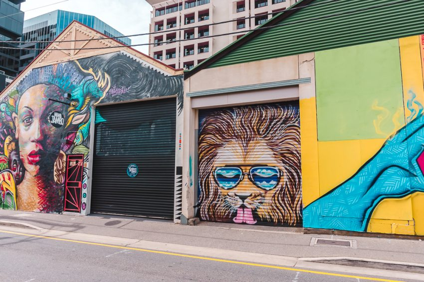 A woman and a lion wearing sunglasses street art in Adelaide. Spotting street art is one of the best things to do in Adelaide alone.