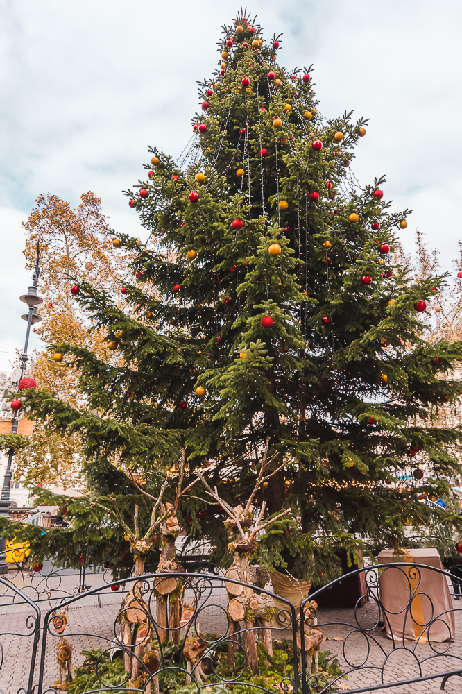 Large pine Christmas tree with ornaments in Budapest