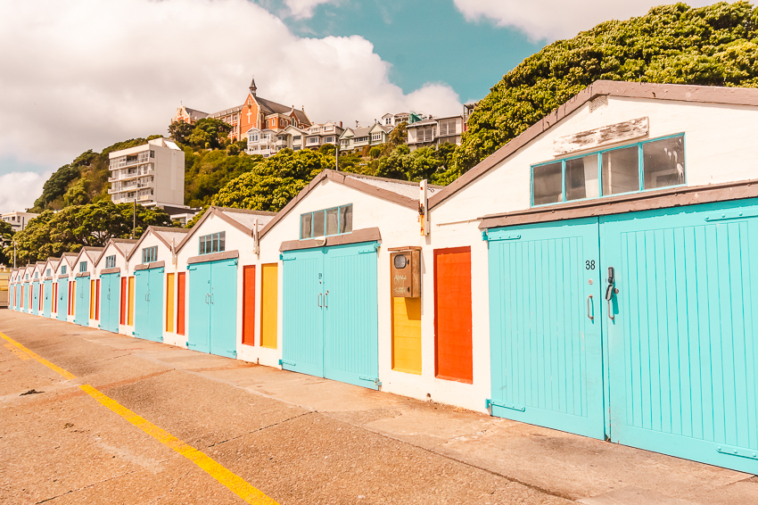 Things to do in Wellington: photograph the Oriental Bay Huts