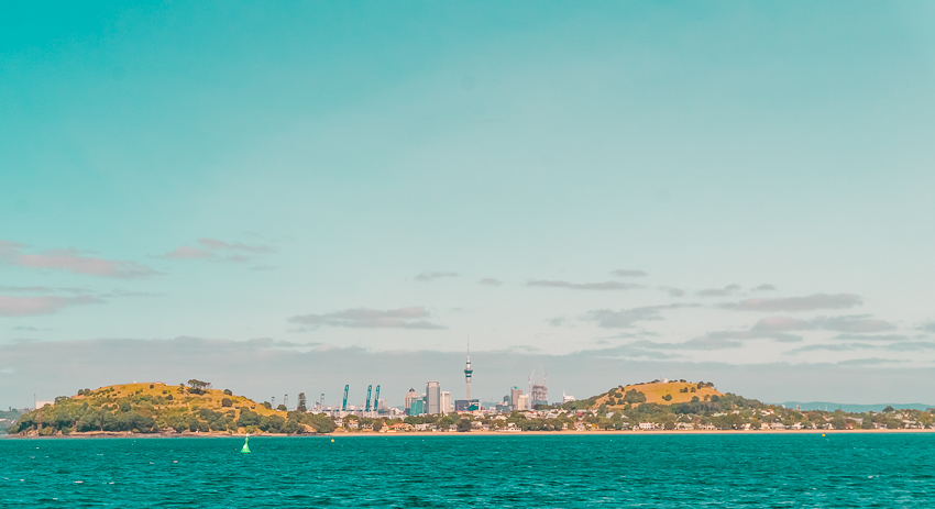 Auckland travel guide: cruise views in Auckland, New Zealand