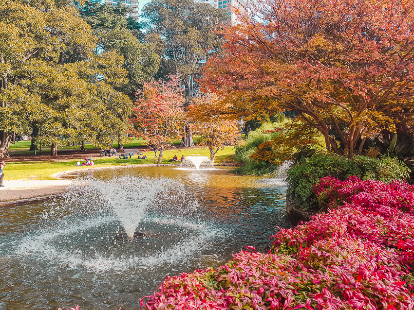 Autumn appearing over the fountains in Treasury Gardens in Melbourne