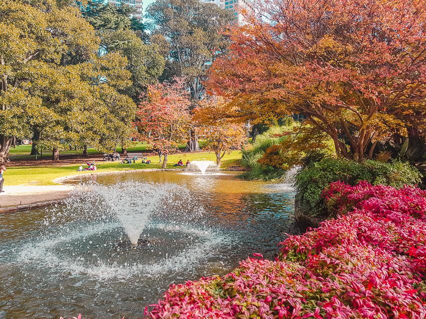 Treasury Gardens in Melbourne