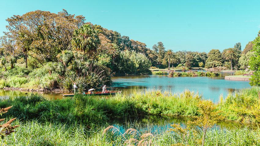 Free things to do in Melbourne: stroll through the Royal Botanic Gardens and see its lake.