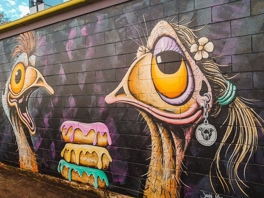 Street art in Eumundi on the Sunshine Coast in Queensland, Australia