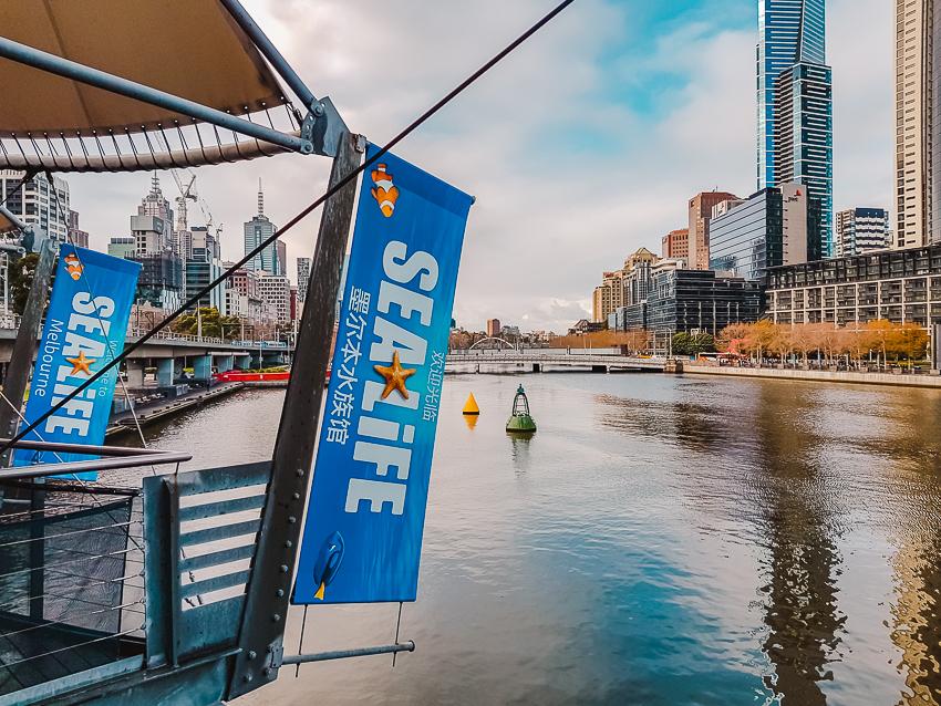 Things to do in Melbourne - visit SEA LIFE Aquarium