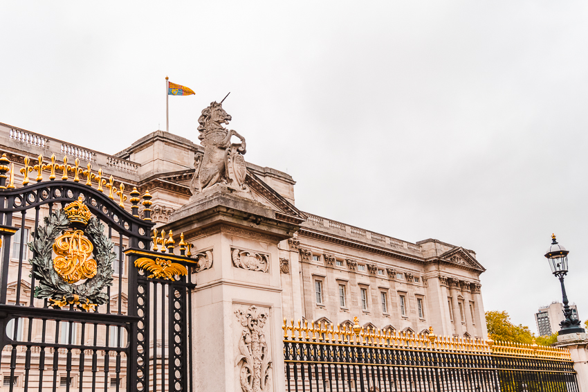 Things to do alone in London - say hello to the Queen at Buckingham Palace.
