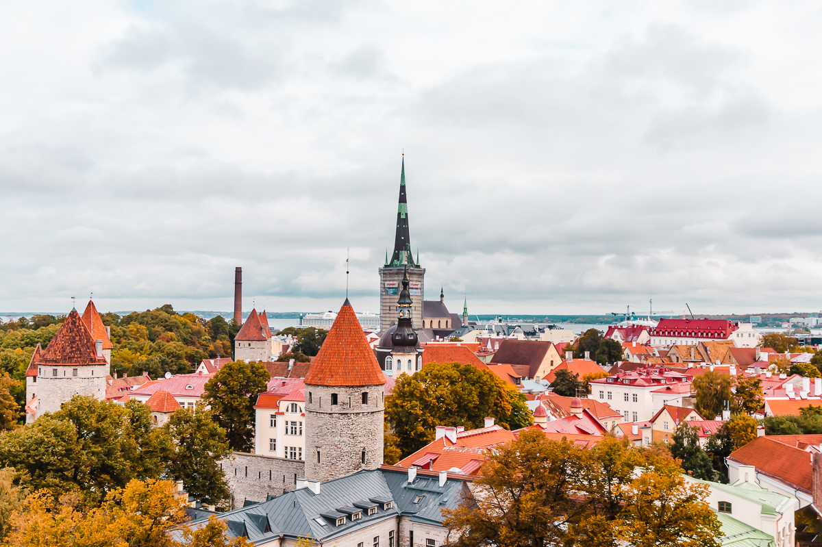 View of terracotta roofs and golden trees in Tallinn, Estonia (Europe budget travel tips).